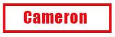 Cameron Rams