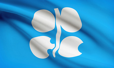 Delegate: OPEC Should Consider Return To Oil Quotas