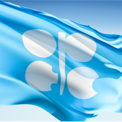 OPEC-led oil production cuts have been well supported by all participating countries despite some teething troubles for non-OPEC members, said the cartel's secretary-general, Mohammed Barkindo.