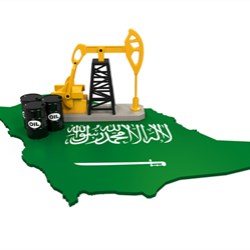 Saudi Arabia slashed the tax rate paid by state oil producer Saudi Aramco, a key milestone in preparing the company for what may be the world's biggest initial public offering.