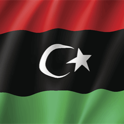 Libya halted loadings from its biggest oil field in the latest disruption to the OPEC nation's crude production and shipments.