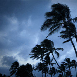 Tropical Storm Nate has formed off of Nicaragua, threatening to inundate Central America, shut oil and gas rigs in the Gulf of Mexico and damage cotton and citrus crops across the U.S. South.