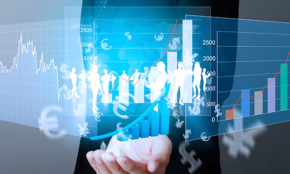 Navigating the Petchem FDI Conundrum in Developing Economies