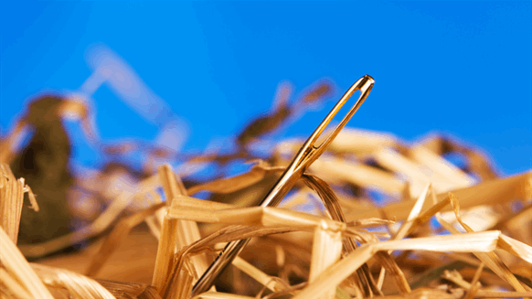 How to Find the Needle in the Big Data Haystack