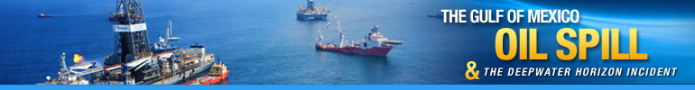 Deepwater Horizon Gulf of Mexico Oil Spill