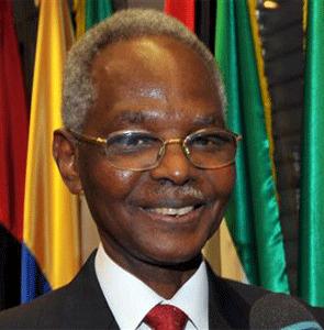 Nigerian Oil Minister Rilwanu Lukman