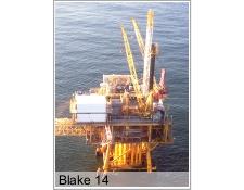 Blake 14