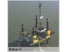 Bohai V