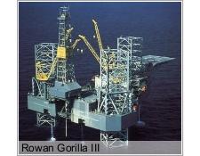 Rowan Gorilla III