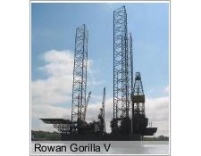 Rowan Gorilla V