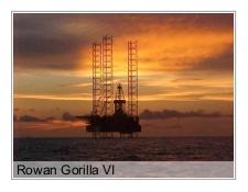 Rowan Gorilla VI