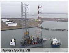 Rowan Gorilla VII