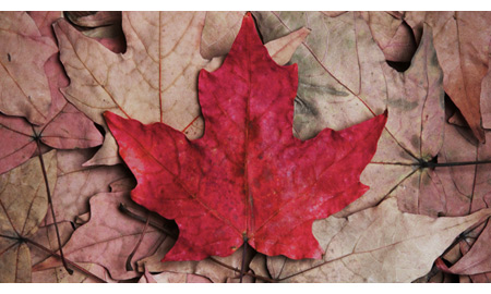 Musings: Canada, O Canada: What Direction for 2013 O&G Capex?