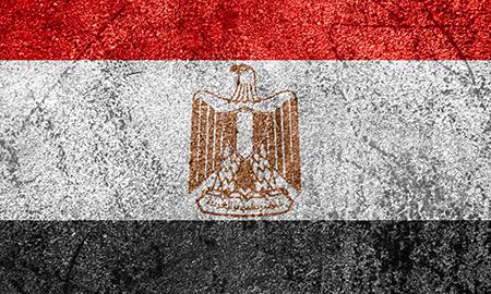 BG Flags Egypt Investment Concerns