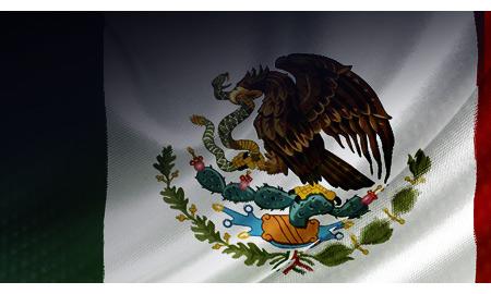 Mexico Lawmakers Poised To Debate Energy Reform-Top Senator