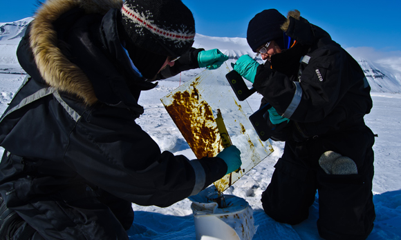 New Oil-Spill Research In Arctic Reveals Surprising Results