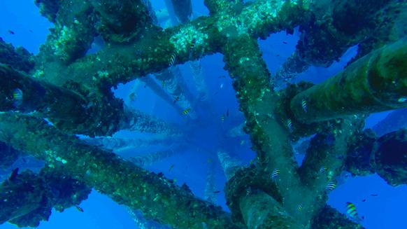 $50 Oil Threatens Future Subsea Growth