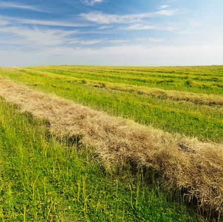 North Dakota Booms into Energy-Rich Era